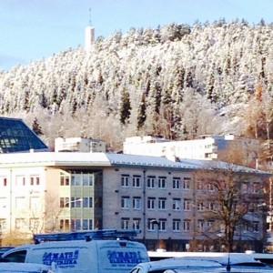 snowy sundsvall